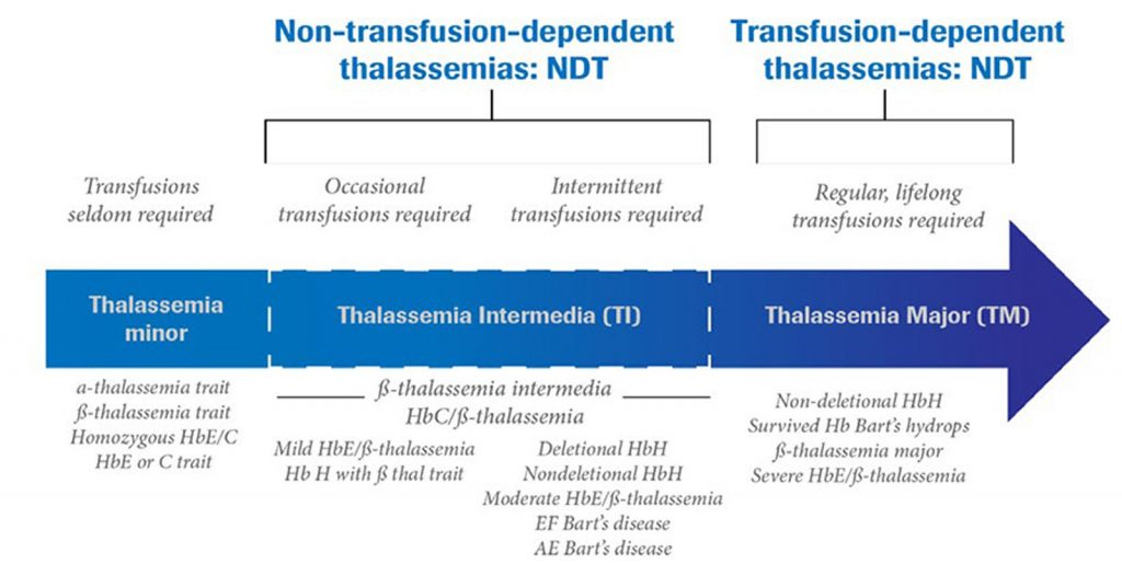 Infographic by Roche Diagram healthcare magazine publications on thalassemias and its diagnostics